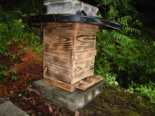 日本ミツバチ用の待ち桶設置しました