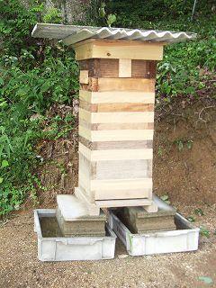 蟻対策をした日本蜜蜂の巣箱