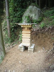 日本ミツバチ2群目の巣箱