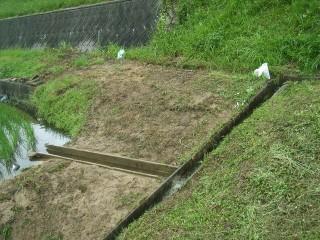 水管理不要の給水路を作りました